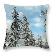 Blue Horizons Throw Pillow