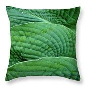 Blue Hosta - Hosta Sieboldiana Throw Pillow