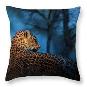 Blue Hour Leopard Throw Pillow