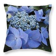 Blue Hydrangea Buds Throw Pillow