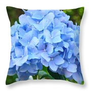Blue Hydrangea Floral Art Print Hydrangeas Flowers Baslee Troutman Throw Pillow