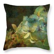 Blue Hydrangea Sunset Impression 1203 Idp_2 Throw Pillow