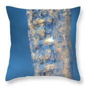 Blue Ice 5 Throw Pillow