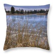 Blue Ice Throw Pillow