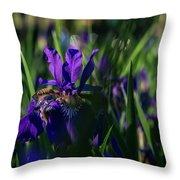 Blue Iris Field  Throw Pillow