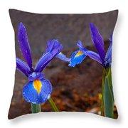 Blue Iris Germanica Throw Pillow