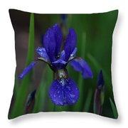 Blue Iris Petal Throw Pillow