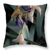 Blue Irises Past Their Prime Throw Pillow