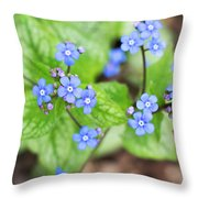 Blue Jack Frost Flowers Throw Pillow