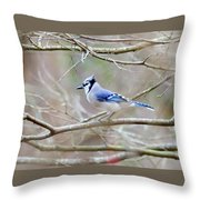 Blue Jay Throw Pillow by George Randy Bass
