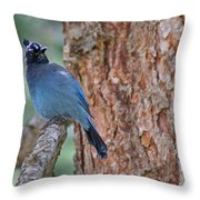 Blue Jay Throw Pillow