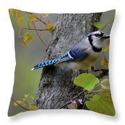 Blue Jay In Red Bud Throw Pillow