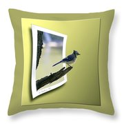 Blue Jay Perched Throw Pillow