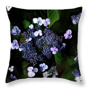 Blue Lace Throw Pillow