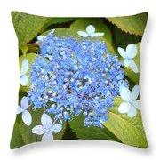 Blue Lacecap Hydrangeas Throw Pillow