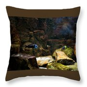 Blue Little Fish In Aquarium Throw Pillow