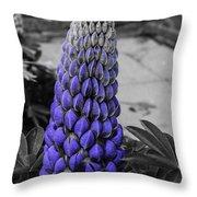 Blue Lupin Colour Pop Throw Pillow
