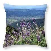 D3b6377-blue Lupine And Kenwood  Throw Pillow