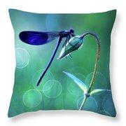 Blue Magic Throw Pillow
