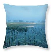Blue Morning Flash Throw Pillow