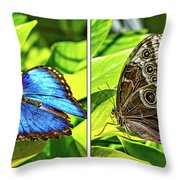 Blue Morpho Butterfly Diptych Throw Pillow