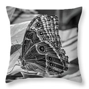 Blue Morpho Butterfly Underside Bw Throw Pillow