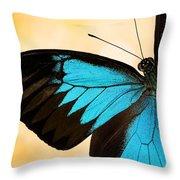 Blue Morpho Closeup Throw Pillow