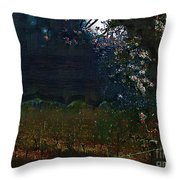 Blue Night In The Field Throw Pillow