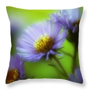 Blue On Green Throw Pillow
