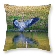 Blue On The Bank Throw Pillow