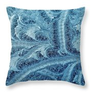 Extraordinary Hoarfrost Scallop Patterns In Blue Throw Pillow