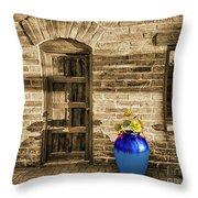 Blue Pot, Tubac, Arizona Throw Pillow