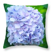 Blue Purple Hydrandea Floral Art Botanical Prints Canvas Throw Pillow