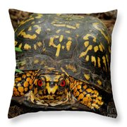 Blue Ridge Box Turtle Throw Pillow