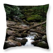 Blue Ridge Brook Throw Pillow