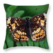 Blue Ridge Butterfly Throw Pillow
