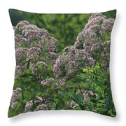 Blue Ridge Flowers Throw Pillow