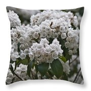 Blue Ridge Mountain Laurel Throw Pillow