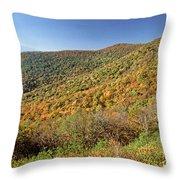 Blue Ridge Mountains In Autumn Throw Pillow