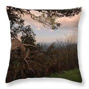 Blue Ridge Mts Throw Pillow