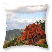 Blue Ridge Parkway, Buena Vista Virginia 5 Throw Pillow
