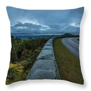 Blue Ridge Parkway Twisty Throw Pillow