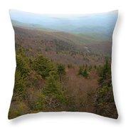 Blue Ridge View Throw Pillow