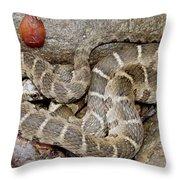Montreat Water Snake Throw Pillow