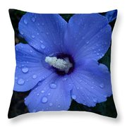 Blue Rose Of Sharon II Throw Pillow