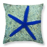 Blue Sea Star Or Starfish On Sand Throw Pillow