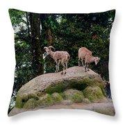 Blue Sheep Throw Pillow