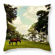 Blue Skies And Pines Throw Pillow