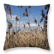 Blue Sky And Seaoats Throw Pillow