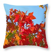Blue Sky Autumn Art Prints Colorful Fall Tree Leaves Baslee Throw Pillow